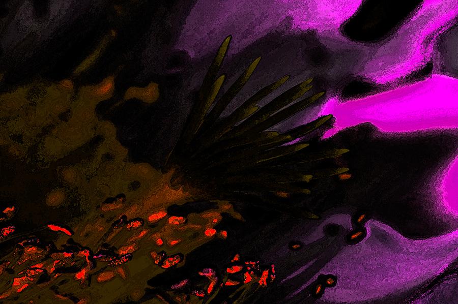Flowers – im innern der kaktusblüte