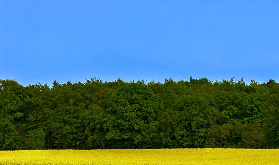 blaugrüngelb